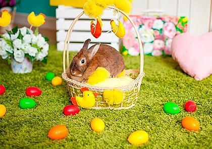 Детям о празднике Пасха